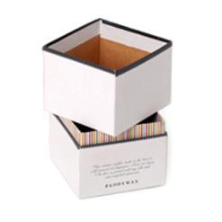 rigidbox4thumbnail
